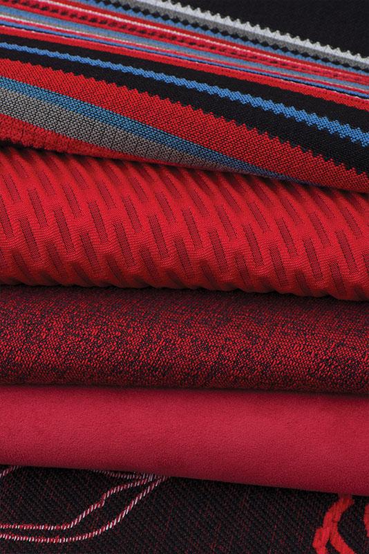 Fabric Swatch 6