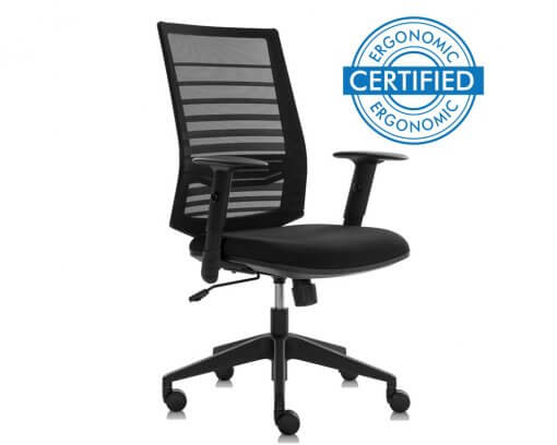 Certified-Ergonomic-Office-Chairs-Accent-Big