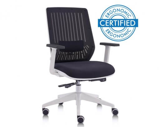 Certified Ergonomic Office Chair   Motion White
