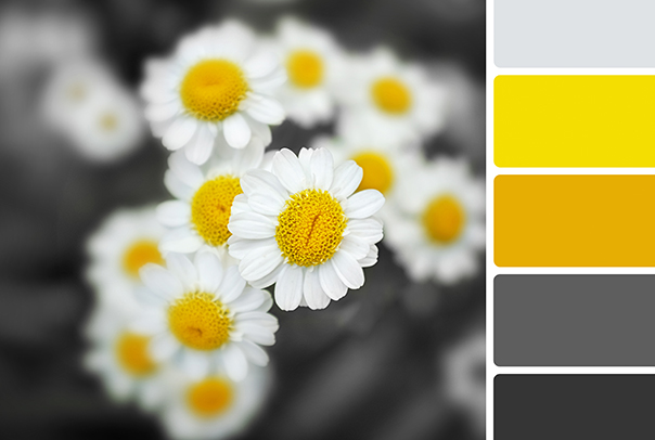 office-colour-ideas_yellow
