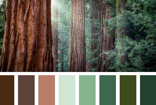 office-colour-ideas_green