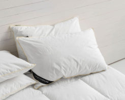 Linen House Pillow Cotton Casing Siliconised Microfibre White