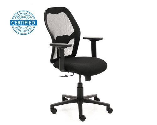 Tone Certified Ergonomic Office Chair