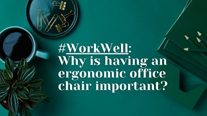 ergonmic office chair