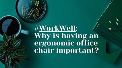 ergonmic office chair
